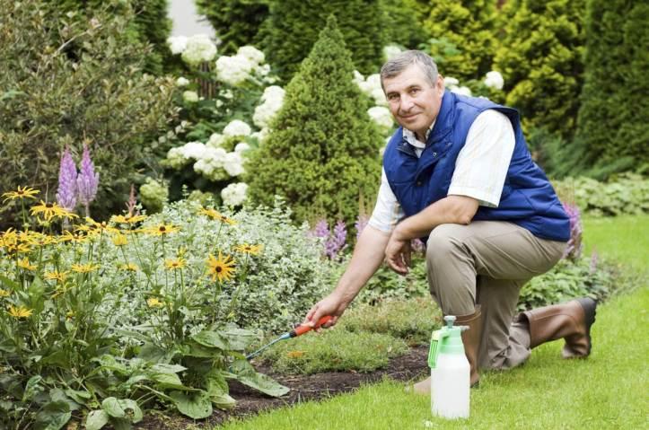 Subservient Garden Services